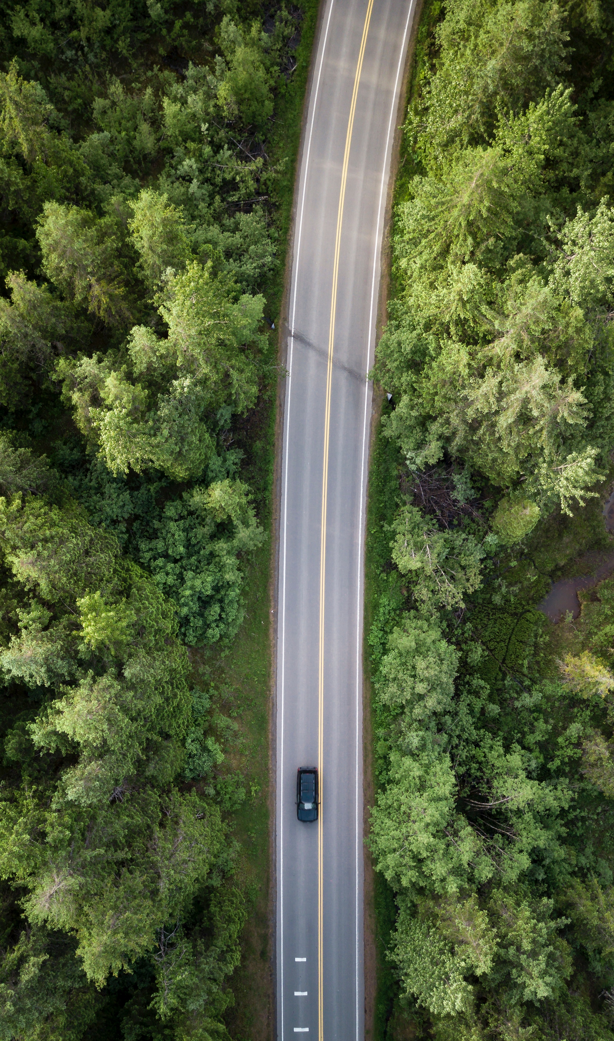 Car on road, viewed from above